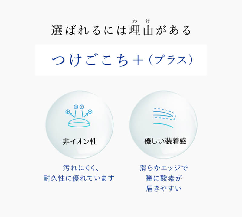 ワンマンスリフレア(1month Refrear)(6枚入)
